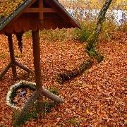 Podzimní Třeboňsko